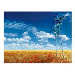 Brush Sky the - tarjeta postal