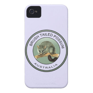 Brush tailed possum iPhone 4 Case-Mate case