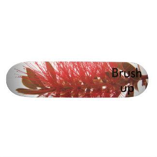 Brush up skateboard