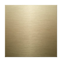 Brushed Bronze Canvas Print