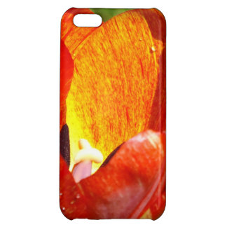 Brushed Tulip iPhone 5 case