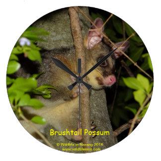 Brushtail Possum Large Clock