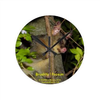 Brushtail Possum Round Clock