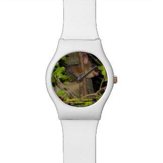 Brushtail Possum Watches