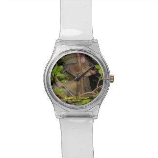 Brushtail Possum Wrist Watch