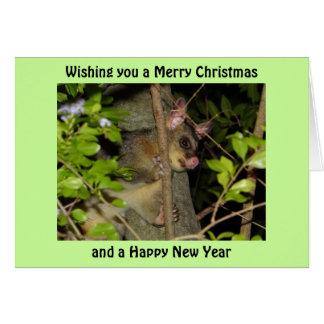 Brushtail Possum Xmas Card