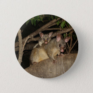 Brushtail Possums Button