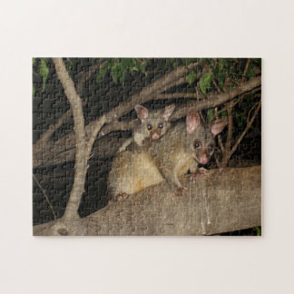 Brushtail Possums Jigsaw Puzzle