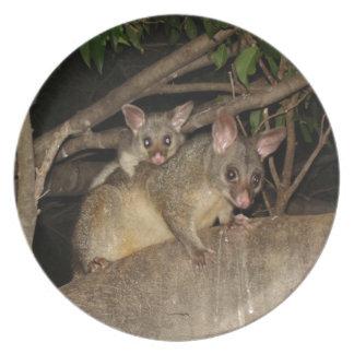 Brushtail Possums Melamine Plate