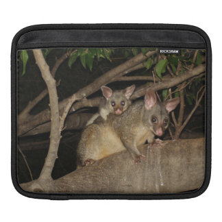 Brushtail Possums Sleeves For iPads