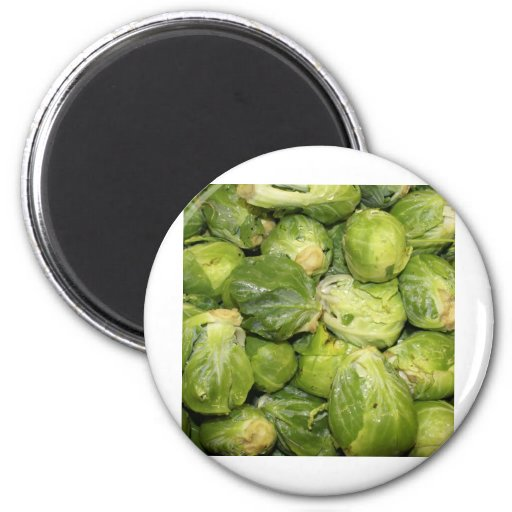 Brussel Sprouts Magnet