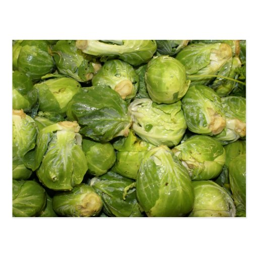 Brussel Sprouts Post Cards