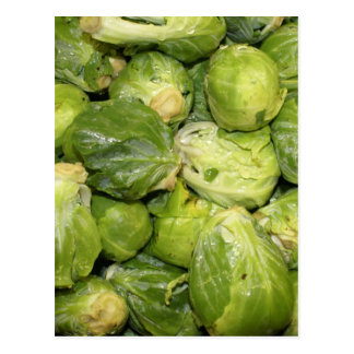 Brussel Sprouts Postcard