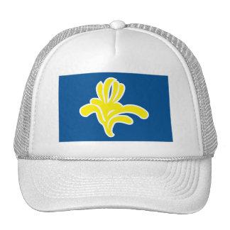 Brussels Flag Hat