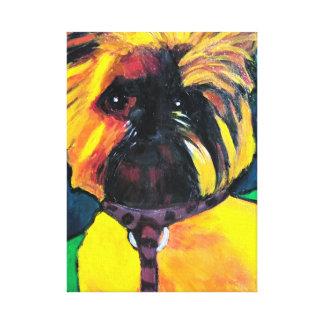Brussels Griffon Canvas Print