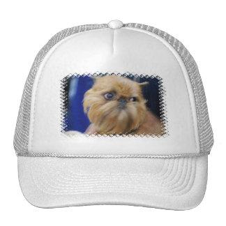 Brussels Griffon Dog Baseball Hat