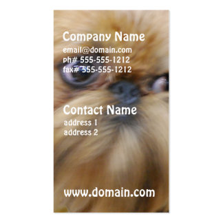Brussels Griffon Dog  Business Cards