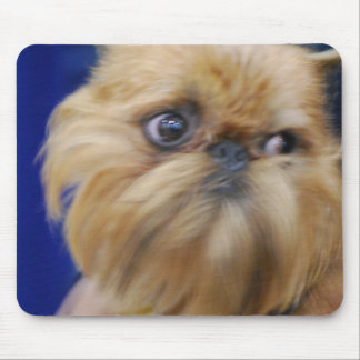Brussels Griffon Dog Mouse Pad
