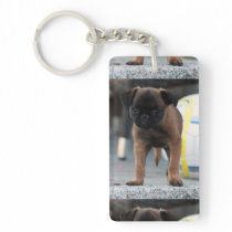 brussels griffon front view keychain