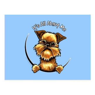Brussels Griffon Its All About Me Postcard