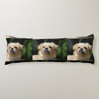 brussels-griffon.png body pillow