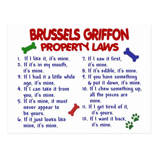 BRUSSELS GRIFFON Property Laws 2 Postcard