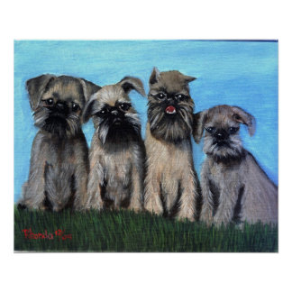 Brussels Griffon Puppies Dog Puppies Poster