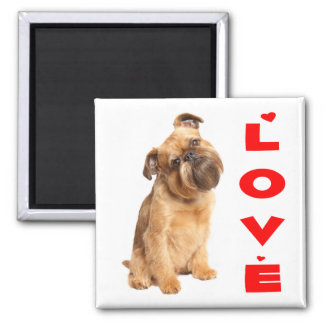 Brussels Griffon Puppy Dog - Red Love Hearts Magnet