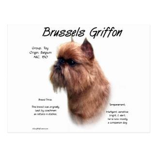 Brussels Griffon (rough) History Design Postcard