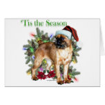 Brussels Griffon 'Tis Greeting Cards