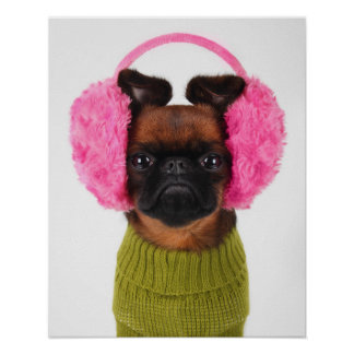 Brussels Griffon With Pink Earmuffs Poster