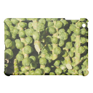 Brussels Sprouts iPad Case