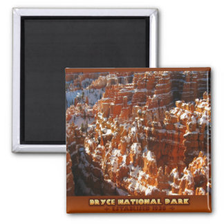 BRYCE 2 INCH SQUARE MAGNET