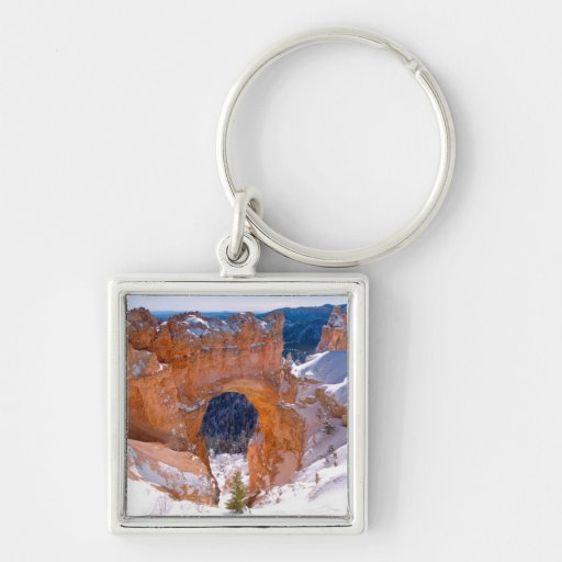Bryce Canyon Arche Silver-Colored Square Keychain
