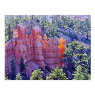 Bryce Canyon Glowing Postcard