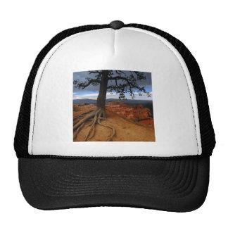 Bryce Canyon Mesh Hat