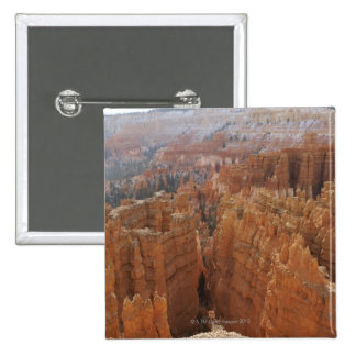 Bryce Canyon hoodoos and Thor s hammer Pinback Buttons