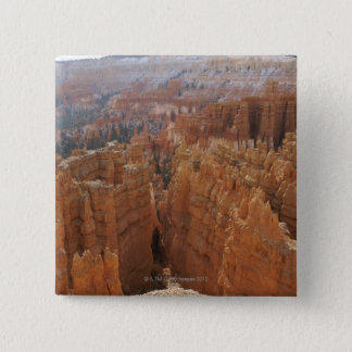 Bryce Canyon hoodoos and Thor's hammer Pinback Button