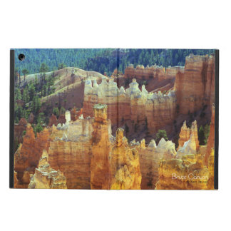 Bryce Canyon iPad Air Cases