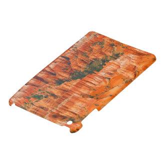 Bryce Canyon iPad Mini Cases