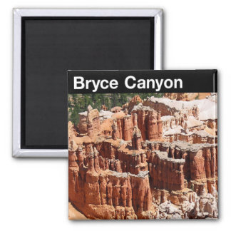 Bryce Canyon National Park 2 Inch Square Magnet