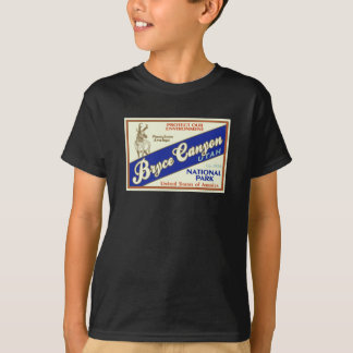 Bryce Canyon National Park (Antelope) T-Shirt