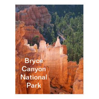 Bryce Canyon National Park Delicate Hoodoos Postcard