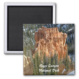 Bryce Canyon National Park Refrigerator Magnets