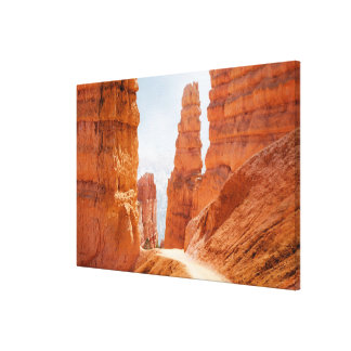 Bryce Canyon National Park Trail Canvas Print