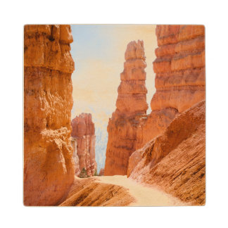 Bryce Canyon National Park Trail Wood Coaster