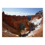Bryce Canyon Natural Bridge Snowy Landscape Photo Card