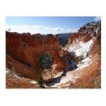 Bryce Canyon Natural Bridge Snowy Landscape Photo Postcard