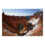 Bryce Canyon Natural Bridge Snowy Landscape Photo Poster
