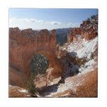 Bryce Canyon Natural Bridge Snowy Landscape Photo Tile